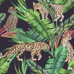 Midnight Jungle