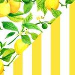 Limoni + Yellow & White Stripes