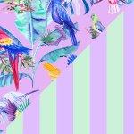 Purple Paradise + Lilac & Mint Stripes