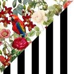 Tropical Romance + Black & White Stripes