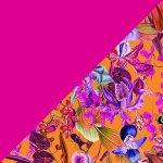 Orchid Rush + Magenta